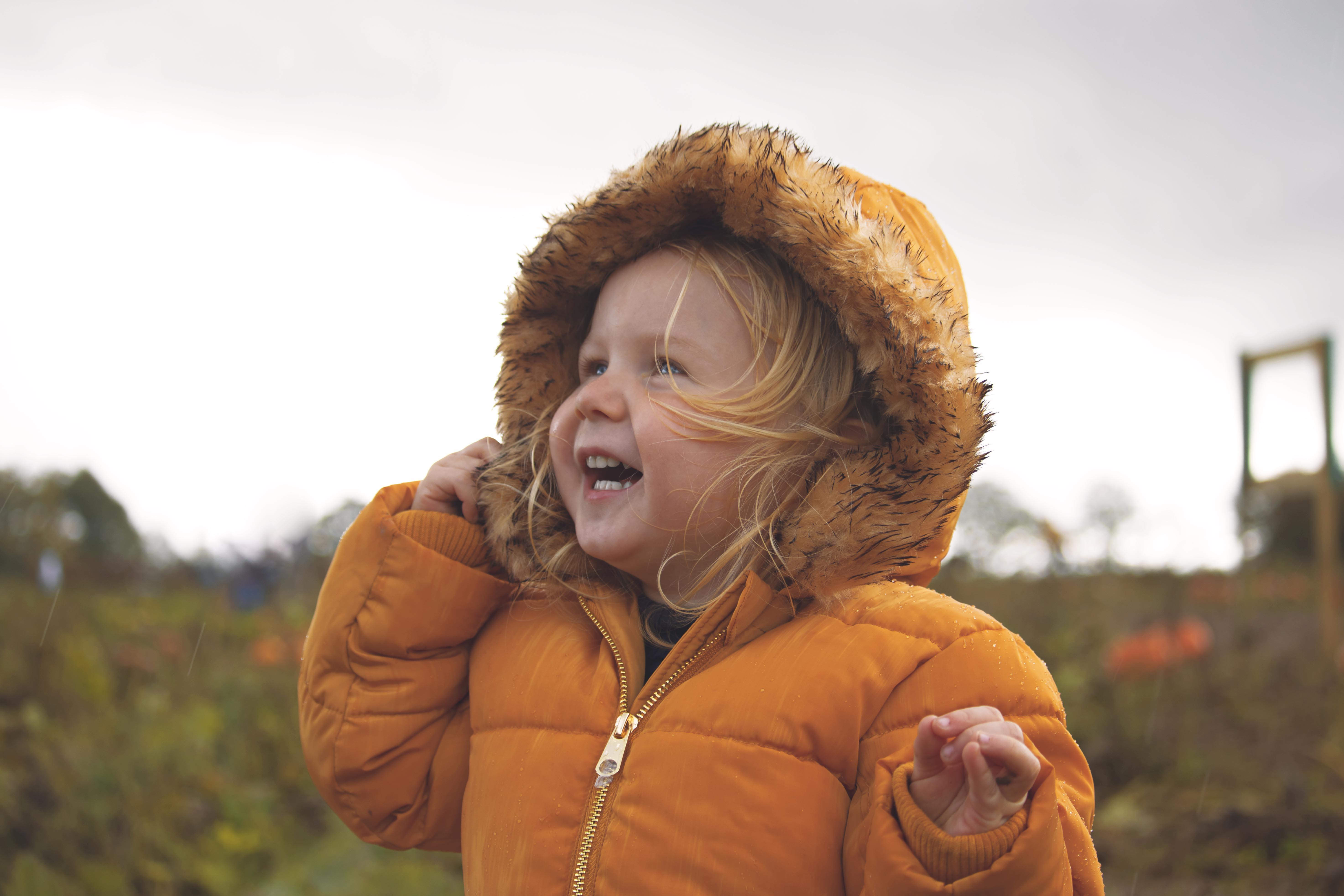 English Pumpkin Picking Photos