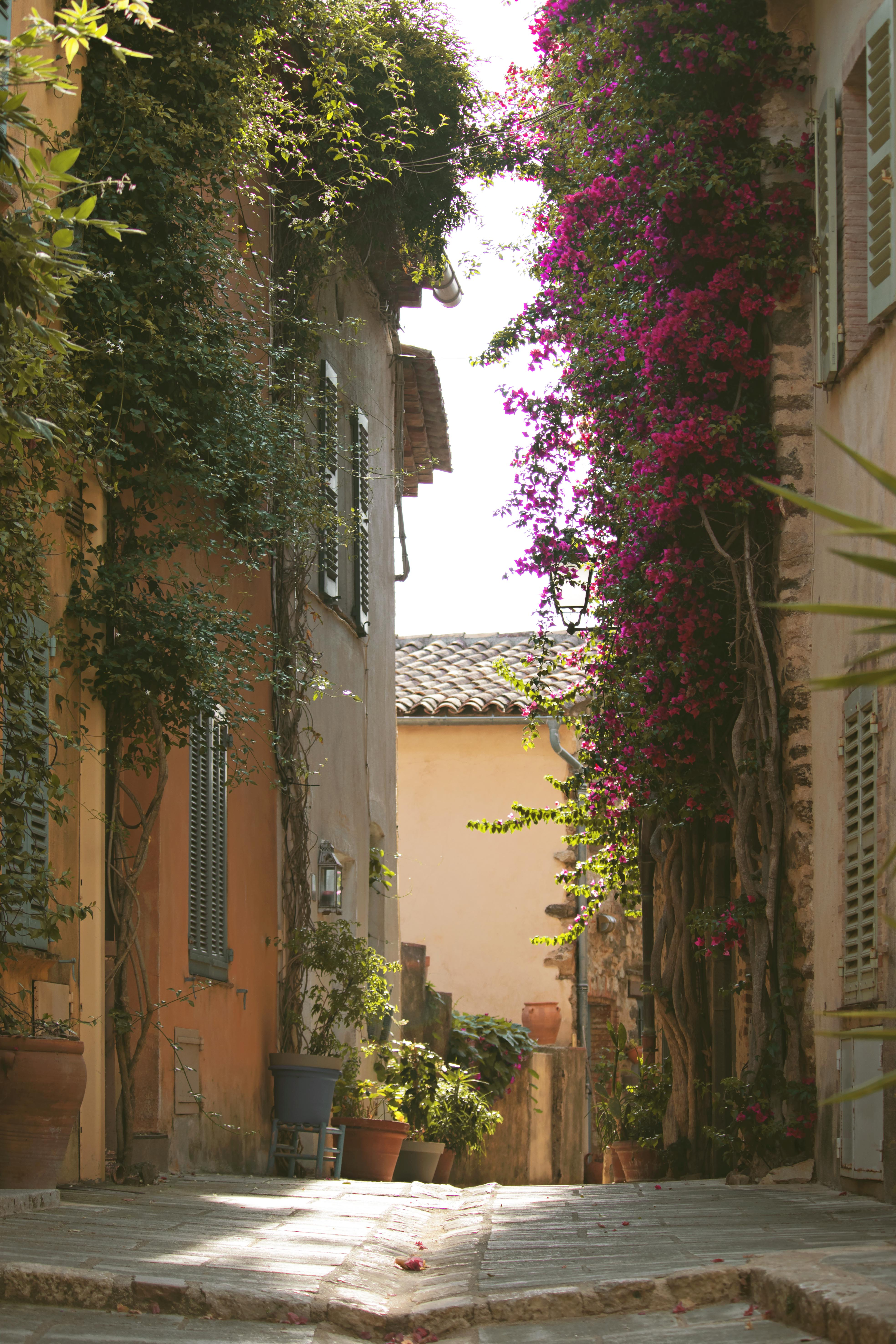 Cobbled Streets in South of France