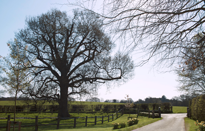 Gate Street Barn, in Surrey