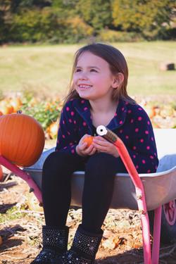 Pumpkin Family Photographer