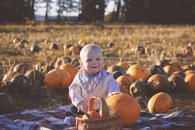 Mini Pumpkin Session