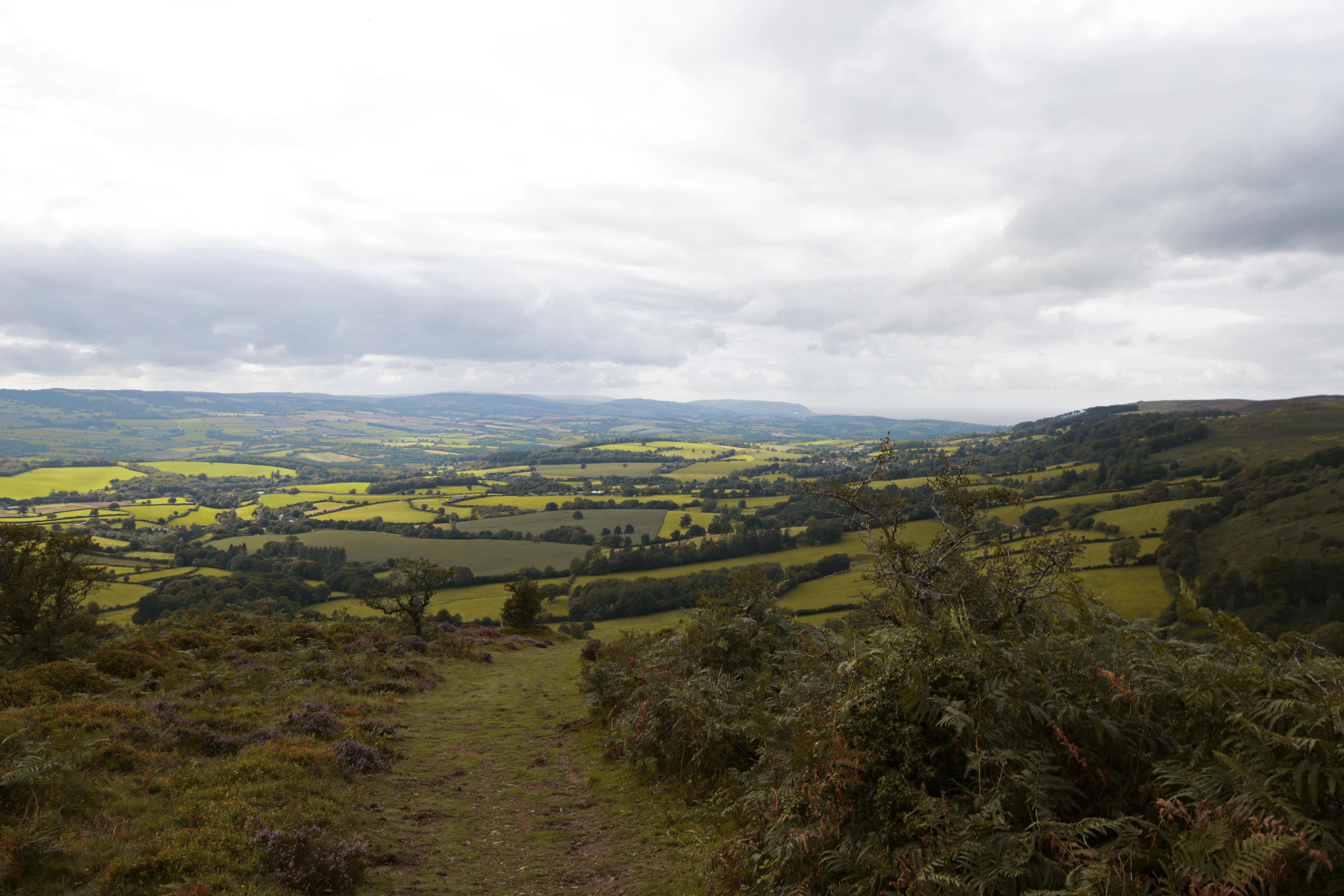 Quantock Hills, South West