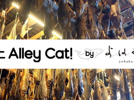 2019.10.10 村上Alley Cat! byよはくや
