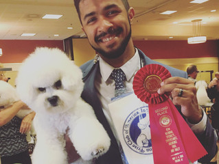 Bichon Frisé Club of America Nationals 2018
