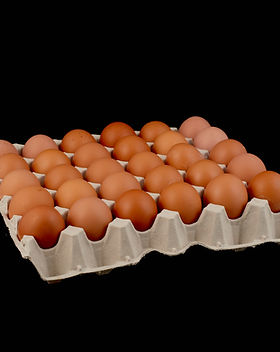 Huevos XL.JPG