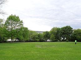 image16.jfif