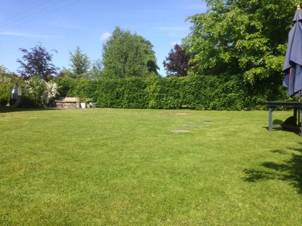 garden to enjoy