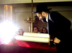 Orthodox Jewish Rabbi Reading Torah