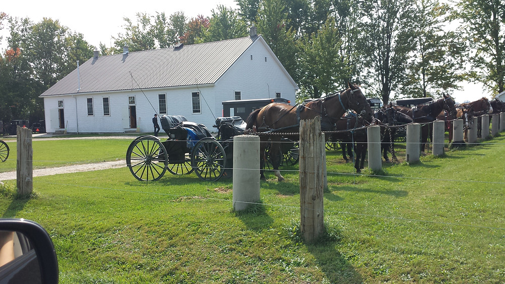 Old Order Mennonites - Horses hitched at church