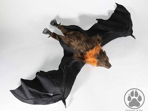 Brown and Rust Flying Fox Artdoll