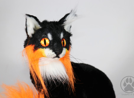 Inside Netsu the Fire Element Kitten