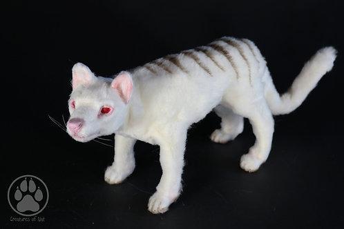 Cinus Albino Tasmanian Tiger - Artdoll OOAK