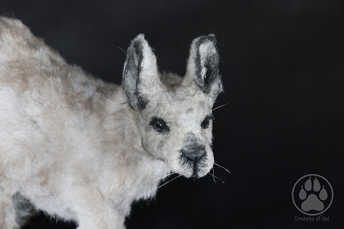 Gangarruu the Eastern Grey Kangaroo - Artdoll OOAK