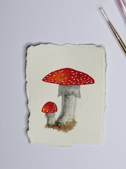 Amanita Mushroom - Watercolour Paintings