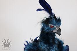 nightwing phoenix2.jpg