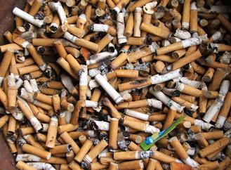 מגיפת הטבק העולמית – ממה אנחנו רוצים לצאת כמעשנים?