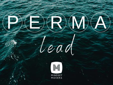 Einfach erklärt: PERMA-Lead in 5 Minuten