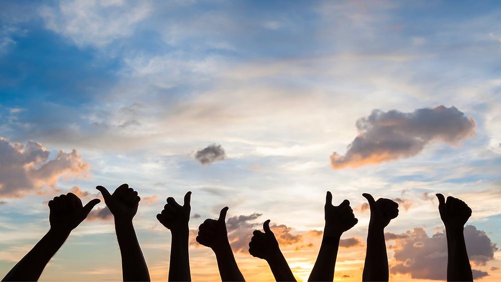 Zufriedenheit und Erfolg für Unternehmer, Team und Familienleben mit Reiss Motivation Profile