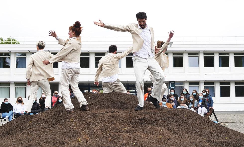Croutes_danse du jardinier Mycélium terr
