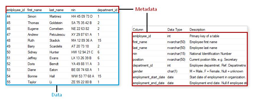 Metadata SEO Example Pro Digital Services
