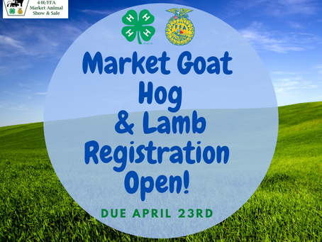 2021 Market Hog, Goat, & Lamb Registration Open!