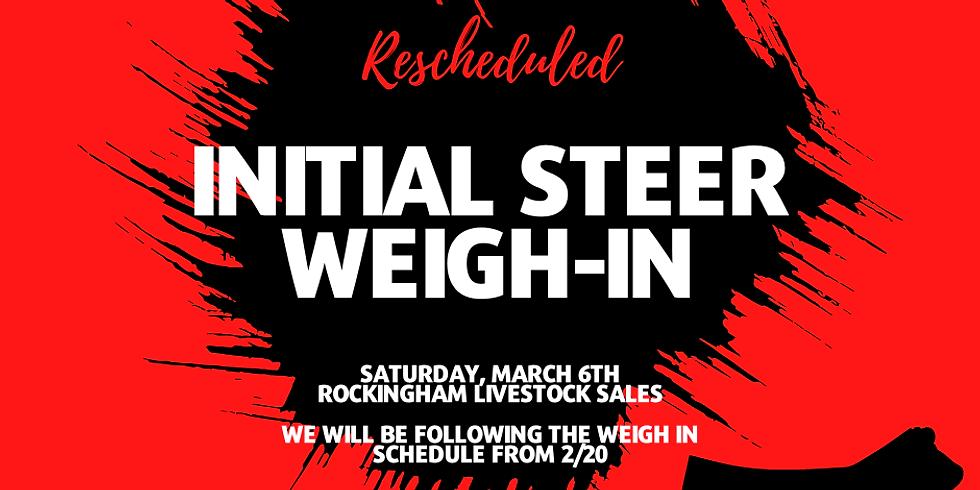 Initial Steer Weigh-In
