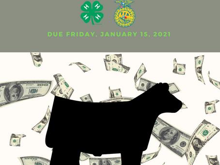 Steer Registration & Fees Due January 15h!