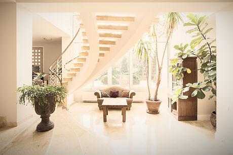 Luxury Mansion Interior_edited.jpg
