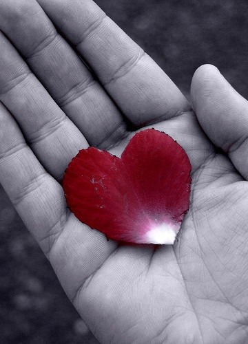 Be loving to others. Sometimes, you just may not know who has giving you their heart in the palm of your hands. (photo from google images)
