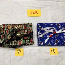 XWB8-9.jpg