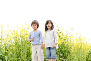 子育て鑑定を導入