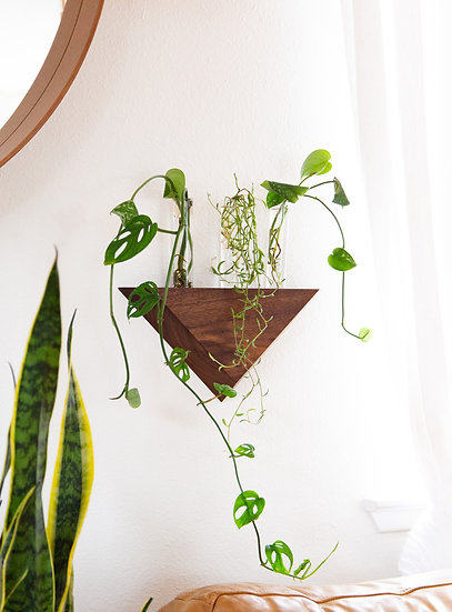 Floating Propagation Wallhanging