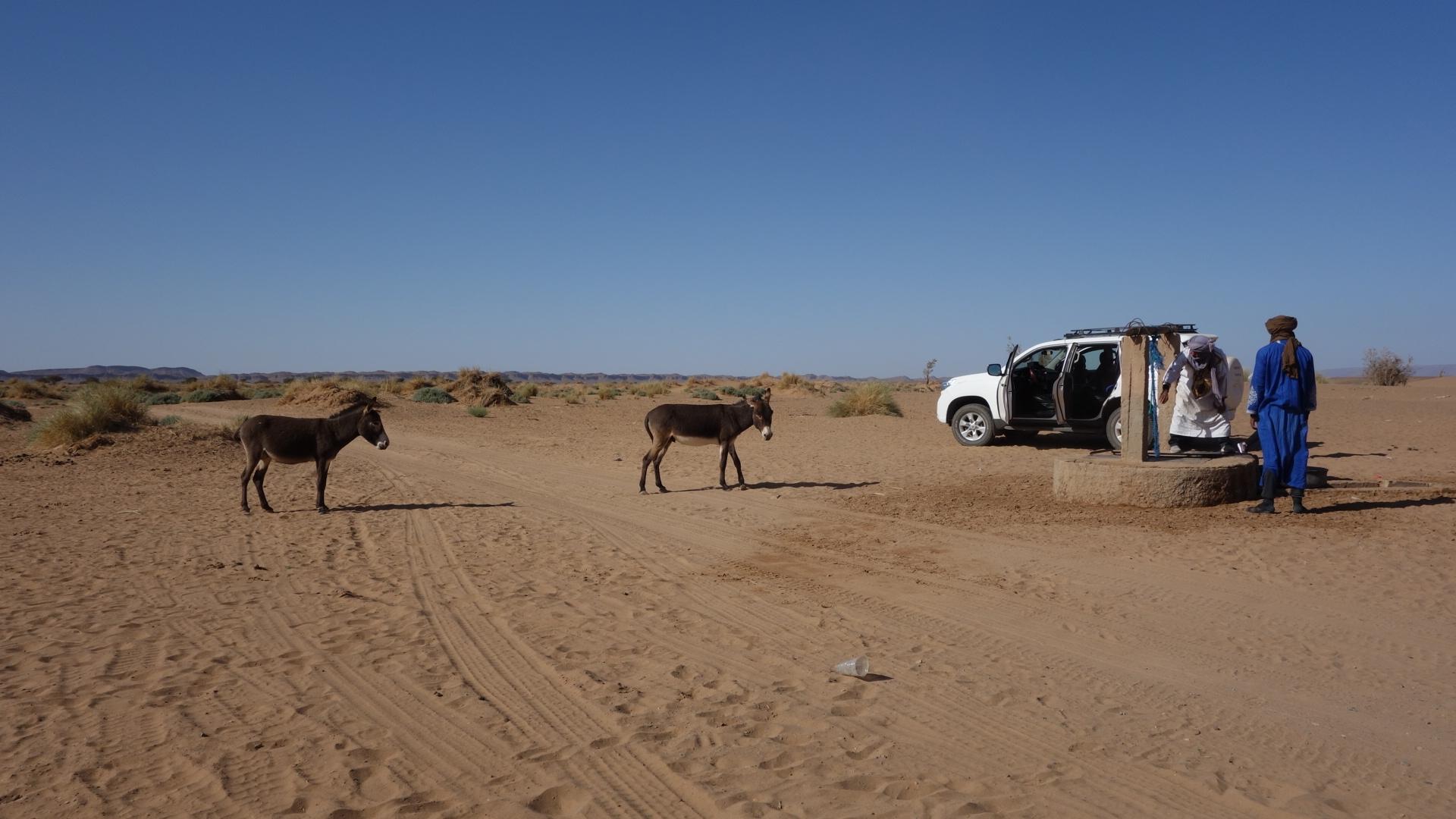 Circuit dans le désert