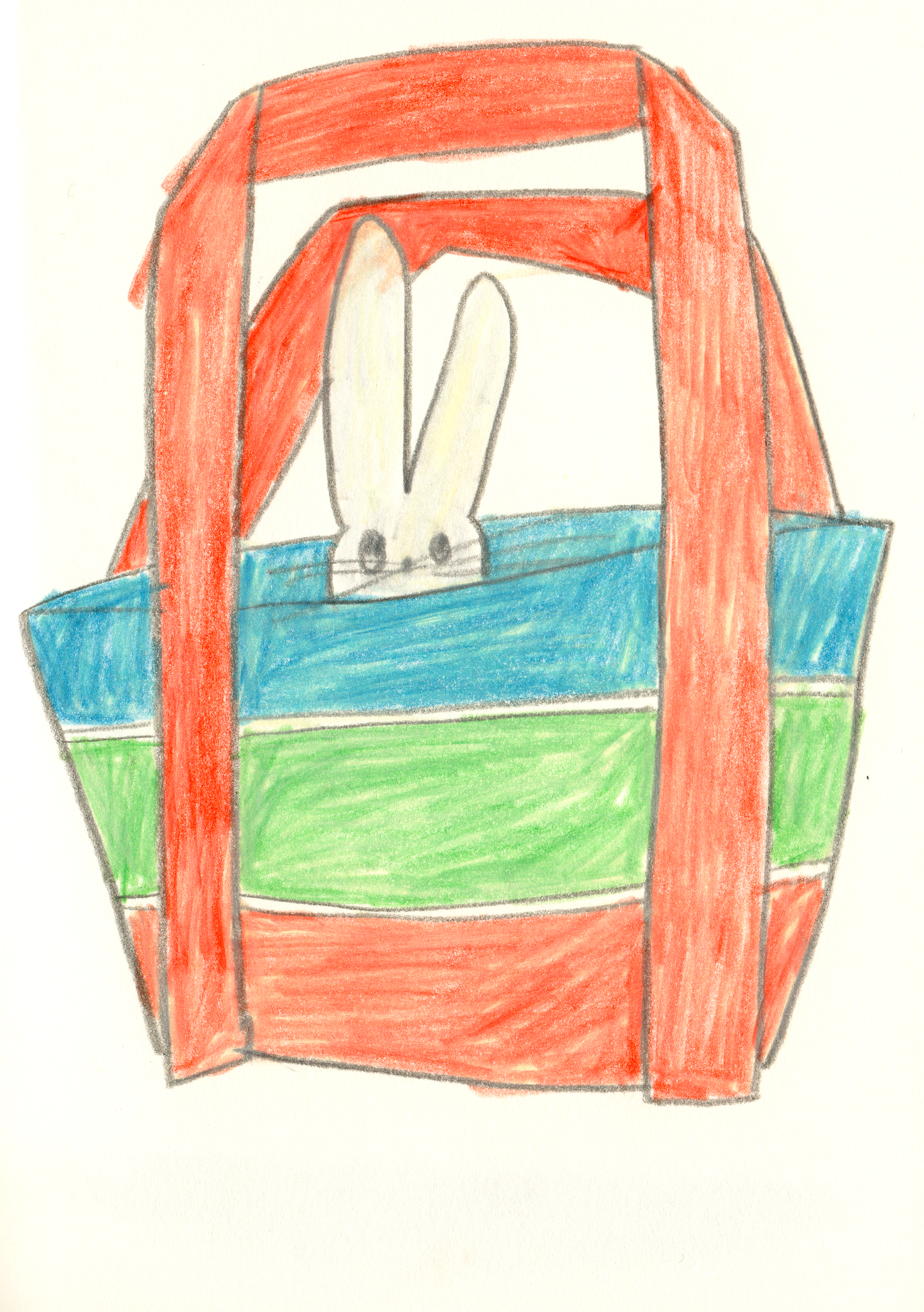 rabbit in bag