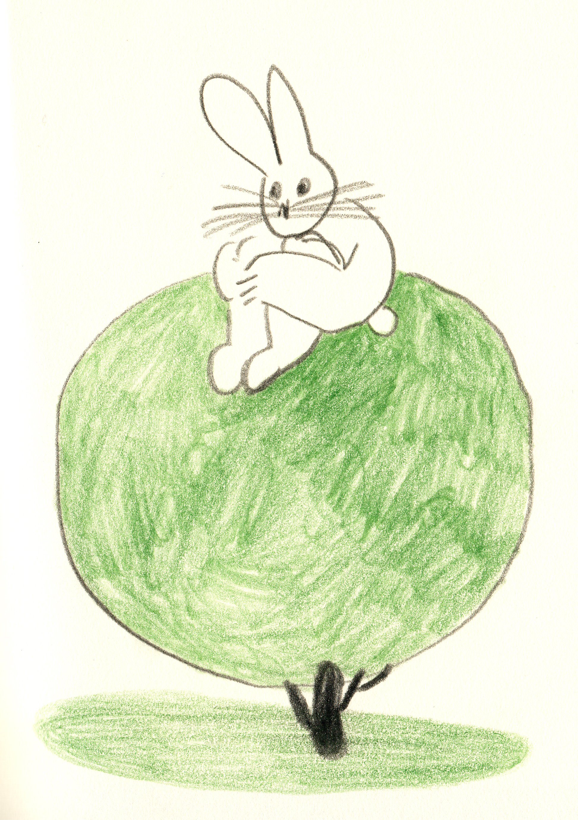 rabbit on tree