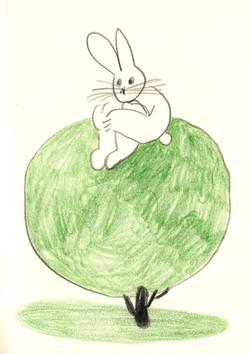 rabbit on tree