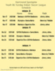 8U Week 2-4 Schedule - Made with PosterM