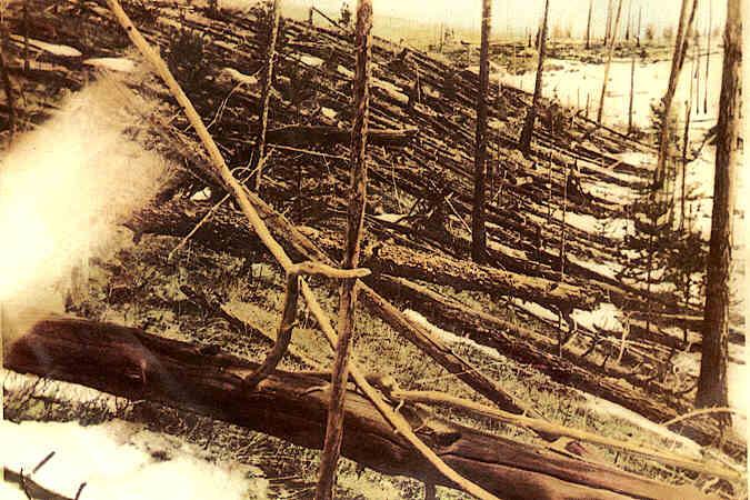 Повалені дерева в районі тунгуської події, за матеріалами експедиції Л. Кулика, 1927