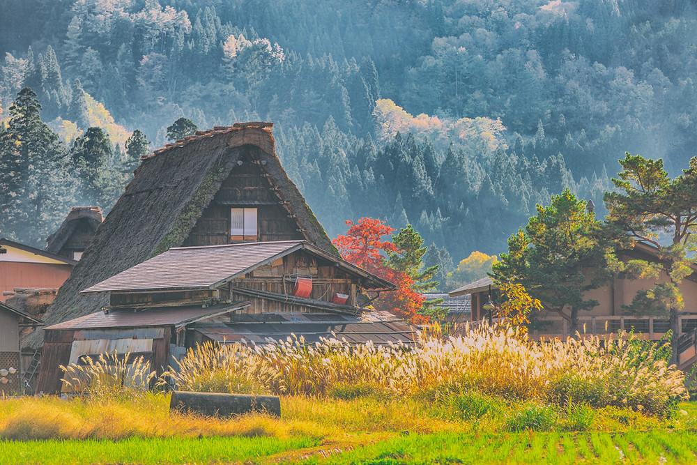 Case tradizionali a Shirakawa go