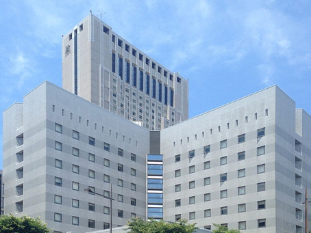 Le 3 migliori catene economiche di hotel in Giappone
