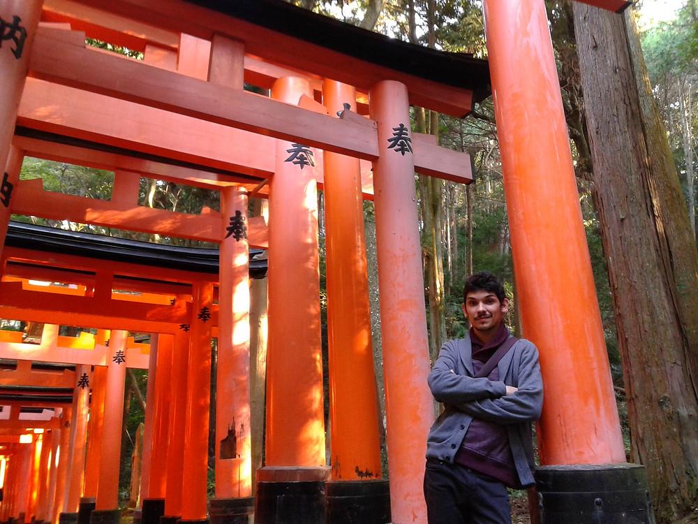 Vista dall'interno del Fushimi Inari