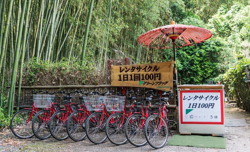 Bicicletta in affitto