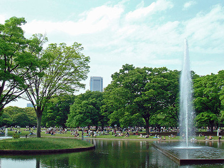 I 6 giardini più belli di Tokyo