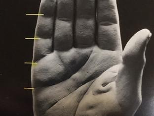 Sculpting Hands Workshop