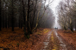 Winter in the Lousa Mountain