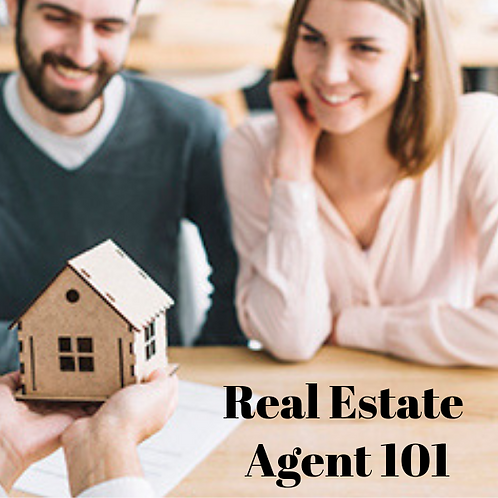 Real Estate Agent 101 Article
