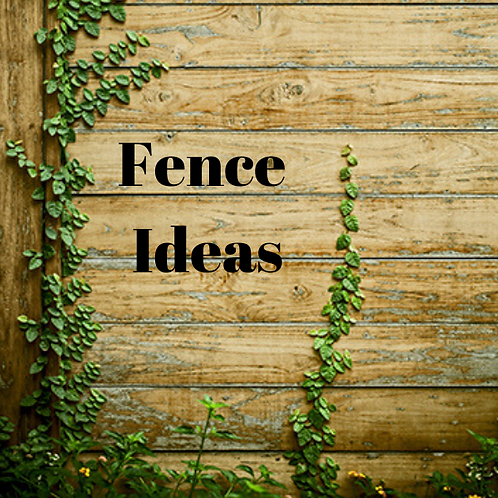 Fence Ideas Article