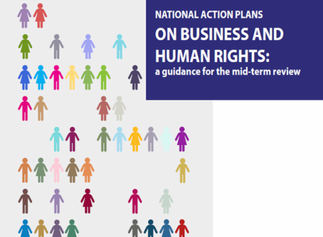 OUT NOW! National Action Plans on B&HR: A guidance for the mid-term review