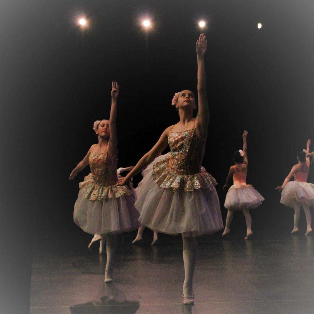 winnipeg ballet schools
