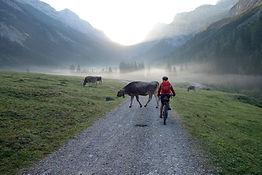 senior woman. riding her e-mountainbike